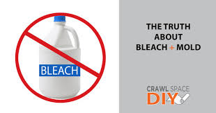 the truth about bleach mold crawl space diy