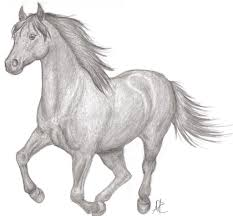 horses drawings easy. Brilliant Horses Beautiful And Easy Drawings To Draw Of Horses  Drawing Art Library Throughout