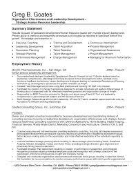 Resume It Summarymples Executivemple Sales Professional Summary