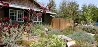 backyard landscaping design. Front Yard Meadow Garden Design Calimesa, CA Backyard Landscaping Design A