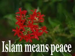 and islam essay terrorism and islam essay