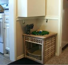 Decorative Litter Boxes For Cats