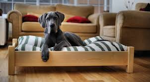 Who really wants to sleep on the floor This raised dog bed would