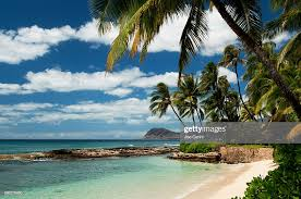 Image Oahu Hawaii Oahu Paradise Cove Beach Stock Photo Pinterest Hawaii Oahu Paradise Cove Beach Stock Photo Getty Images