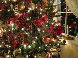 Fwd 2011 Sevier Heights Living Christmas Tree  YouTubeThe Living Christmas Tree Knoxville Tn