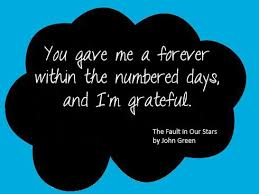 Quotes From The Fault In Our Stars Impressive 48 Heartbreaking Beautiful Quotes From The Fault In Our Stars Wow
