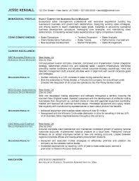 ... Professional Business Resume Templates 20 Former Owner Sample ...