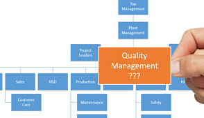 Quality Management Organization Chart Quality Managers The Time Has Come To Be Recognized For