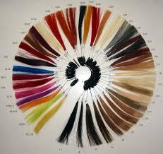 Cool Tone Hair Color Chart Hairtechkearney