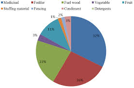 Pie Chart Synonym The Pie Chart Showing Percentages Of Multi Usage Plant