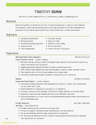 Email Receipts Free Download Resume Inspirational Resume Template ...