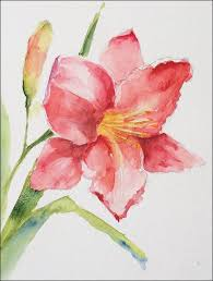 how to paint loose expressive lilies in watercolor