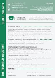 Which Resume Format Is Best Fascinating Good Resume Templates 28 Appropriate Current Resume Formats 28