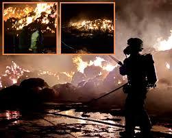 <b>Pigs</b> saved after huge farm fire near Longworth   Oxford Mail