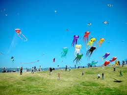 religion in the kite runner major motion picture first christian  the kite runner kites loveshrek kites are arguably the most prominent symbol in the kite runner