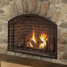 arched glass fireplace doors. A KOZY HEAT Alpha Arched Glass Fireplace Doors D