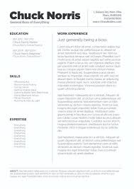 Resume Template For Mac Pages Best Free Creative Resume Templates For Mac Pages Resume Template Pages