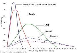 N165 Exam 2 Drugs Insulin Onset Peak And Duration