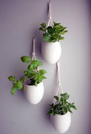 plants feng shui home layout plants. Creative Wall Decoration With Hanging Houseplants Feng Shui Plants For Harmony And Positive Energy In The Living Room Home Layout T