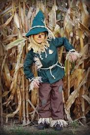 Great Kids Scarecrow Costume, Scarecrow Wizard Of Oz, Family Halloween Costumes, Boy  Costumes,