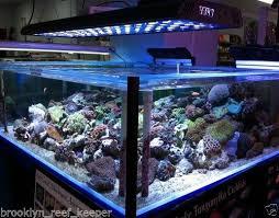 fish tank lighting ideas. 36 fish tank lighting ideas