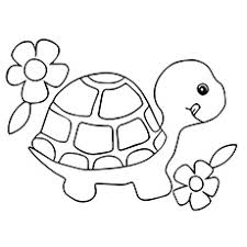 turtle coloring pages. Brilliant Coloring Turtle With Flowers Side By Coloring Page Inside Pages MomJunction