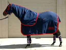 cheval rugs is dedicated to producing top quality custom made rugs for show paddock and performance horses all over australia