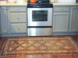 kitchen rug type home design best rugs sets ikea area