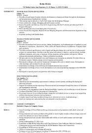 Solutions Developer Resume Samples Velvet Jobs
