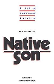 have at least one other person edit your essay about native son essays native son essay analysis of setting major and minor themes yet the novel is not an attempt to merit our sympathy or empathy for the condition of