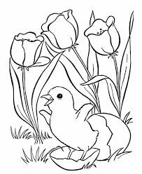 Easter Chick Coloring Pages Hatching Chick Easter Coloring Pages