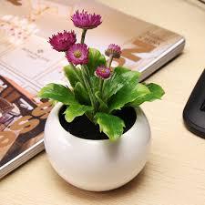 decorative plants for office. SKU187510-4.jpg Decorative Plants For Office O