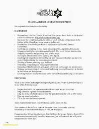 Good Summary For Resume Delectable Good Summary For A Resume Lovely Professional Summary Resume