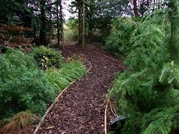 Small Picture Garden Design Garden Design with garden paths Barnstaple Expert