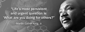 Dr King Quotes Interesting Dr Flo 48 Martin Luther King Quotes