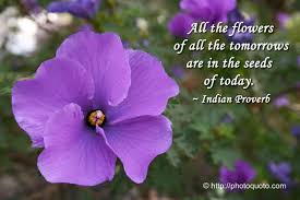 Purple Flower Quotes Sayings Quotes Indian Proverb Photo Quoto