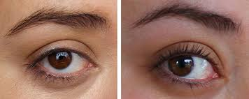 eyelash curler before and after. olympus digital camera eyelash curler before and after y