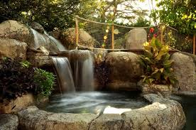 Small Picture Backyard Waterfall Design Ideas Landscaping Network