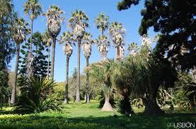tropical garden lisbon