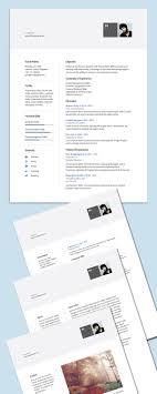 Best 25 Professional Cv Examples Ideas On Pinterest Cv Examples