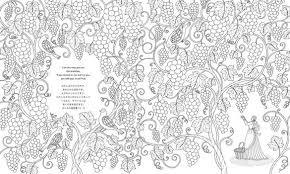 ぬり絵で楽しむ聖書の美しい世界 近藤圭恵 東京イラストレーター