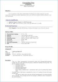 Junior Java Developer Resume Nppusa Org