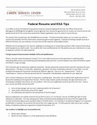 Federal Resume Builder Template Free Koran Sticken Co Stock