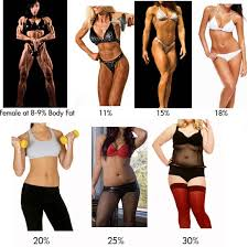 Check Your Body Fat Percentage Online Body Fat Percentage