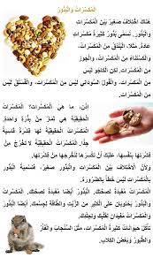 arabic reading passage the website for english translating  essay on reading books my computer essay reading books in arabic