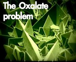 A Cautionary Tale About Foods High In Oxalates Its About