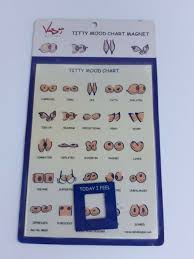 Titty Mood Chart Magnetic Novelty Gag Gift Brand New Sealed Vash Designs