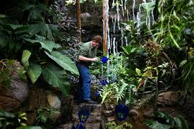 craig mitchell smith adjusts a glass flower on one of his larger pieces inside the climatron at the missouri botanical garden ina hidalgo st louis