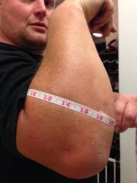 forearm size