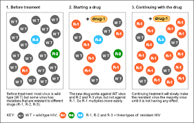 type of drugs resistance 3 mutations with and without drugs training manual